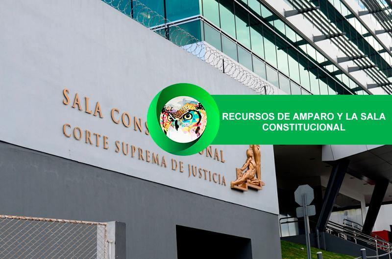 RECURSOS DE AMPARO Y LA SALA CONSTITUCIONAL